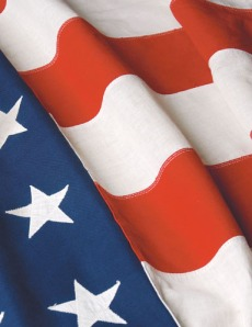 US Flag5420